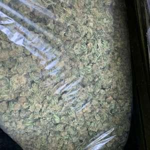 bag of cbd hemp flower