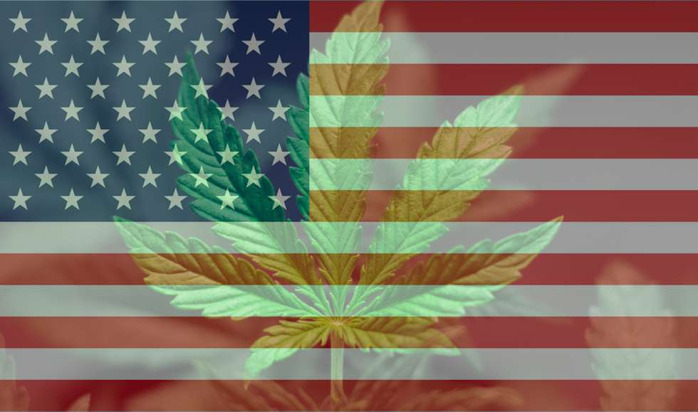 What is the Legality of CBD Hemp Flower That All Shops Must Know in Their State